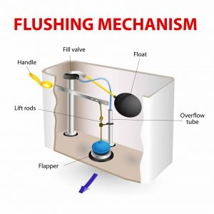 toilet fill valve parts. When you flush your toilet  water fills tank from the supply valve As it a floater gauges when s reached appropriate level What Parts do I Need to Replace For My Toilet Stop Running
